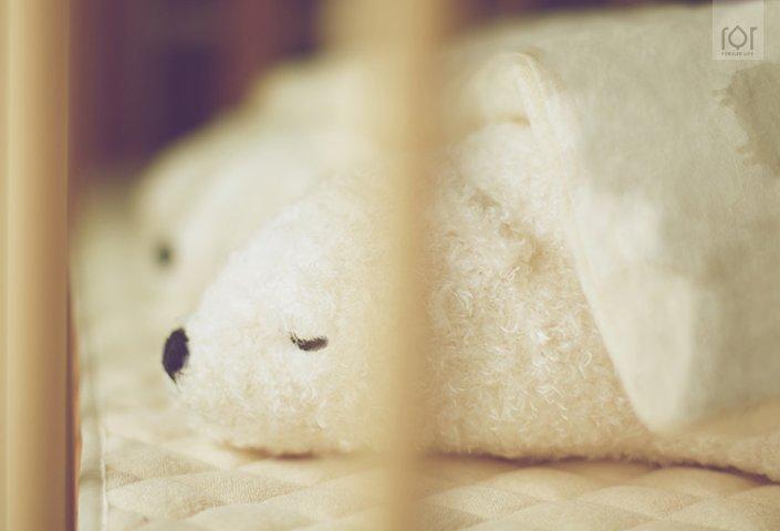 三只白熊除臭抱枕 图片